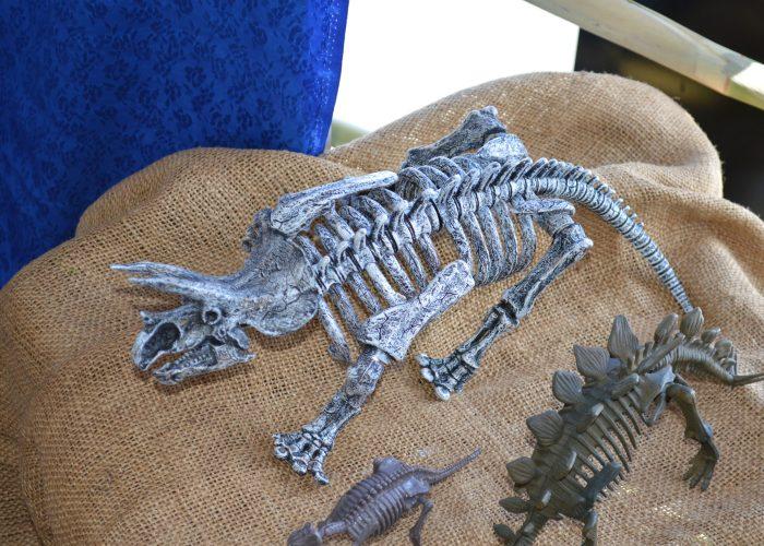Dinosaur holidays