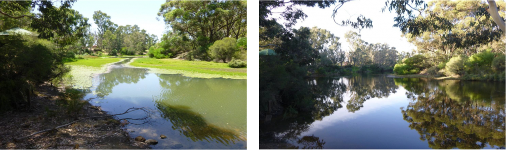 river before and after